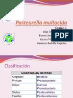 Pasteurella multocida.pptx