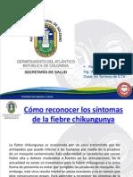 Cómo reconocer los síntomas de la fiebre chikungunya julio 2014.pptx
