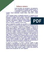 Pallasca minero.docx