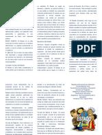 Triptico Estado.doc