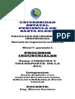 Informe de la cosecha de sal PROCESOS INDUSTRIALES.docx