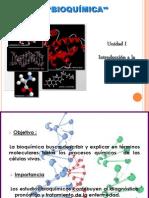 83135005-Introduccion-a-La-Bioquimica.ppt