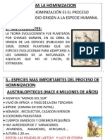 HOMINIZACION2.docx