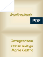 brucella-090709150558-phpapp01.ppt