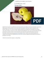 PLANTAR & CULTIVAR_ MARMELO- (Cydonia oblonga Mill.pdf