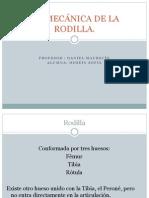 BIOMECÁNICA DE LA RODILLA sofia hosein.pptx
