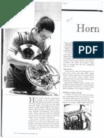 horn maintenance