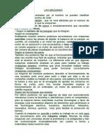 TIPOS DE MAQUINAS.doc