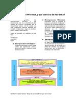 boletin_2_mapa_de_Procesos.pdf