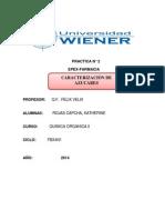 PRACTICA N2 QUIMICA ORGANICA 2.docx