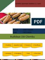 Budidaya Ubi Cilembu (Ipomoea Batatas (l
