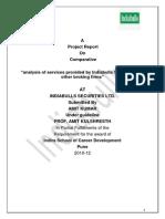 India-Bulls-Project-File.docx