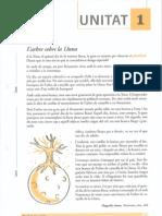DIVERSITAT_Exercicis-de-catala.pdf