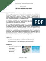 PRACTICA N° 3 FROTIS.docx