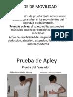 ARCOS DE MOVILIDAD.pptx