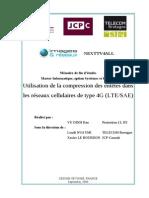 172-20-10-24.pdf