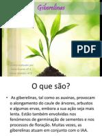 bio-geo.pptx