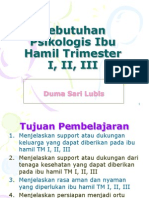 Kebutuhan Psikologis Ibu Hamil Trimester I, II.ppt