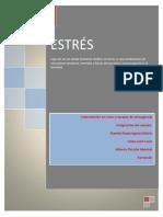 Monografia 2 estres.docx