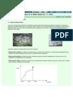 PLIEGUESW.pdf