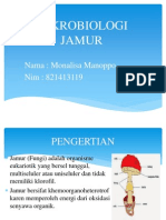 mikrobiologi JAMUR mona ppt.pptx