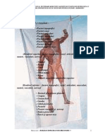 58381350-generalitati-anatomice-libre.pdf