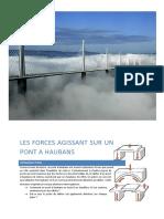 millau_1tech_tpe_bien.pdf