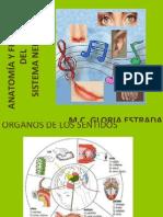 GENERALIDADES Y VISIÓN (1).ppt