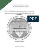 El Amparo.pdf