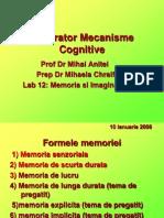 Memoria Si Imaginatia 2009