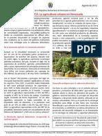 08.20.2012-Urban-Agriculture servicio comunitario.pdf