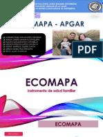 ECOMAPA (1).pptx