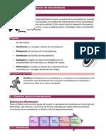 Unidad 1. Introducción a la Mercadotecnia 1.docx