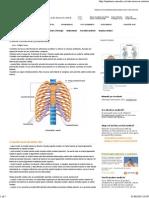 Cutia Toracica (Coastele) _ Anatomie Si Fiziologie