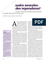 Texto Células madre neuronales.pdf
