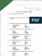 macromolecule worksheets