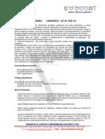 projetopingadeira.pdf
