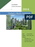 CIUDAD Y MEDIO AMBIENTE.docx