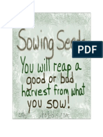 Sowing Seeds - You Will Either Reap a Good or Bad Harvest