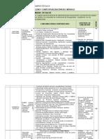 PCI Enfermeria Tecnica 2013.doc