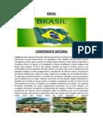 BRASIL.docx