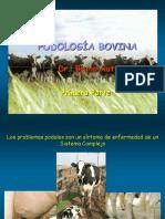 PODOLOGÍA BOVINA PRIMERA.pdf