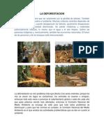 LA DEFORESTACION.docx