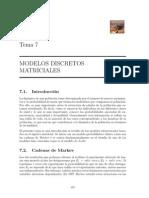modelos matriciales.pdf