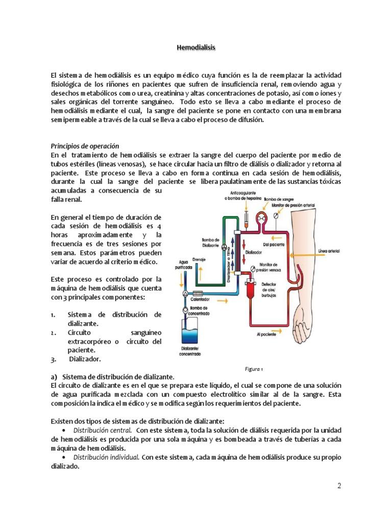 Circuito Sanguineo : Trabajo final. tecnologias.docx