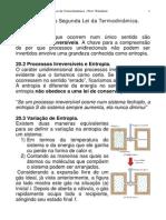CAP_20_ENTROPIA_SEGUNDA_LEI_TERMODINAMICA.pdf