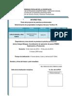 PROYECTO DE PRACTICAS-PROFESIONALES.docx