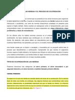 biologiadelasheridasyelprocesodecicatrizaciondocumento2.pdf