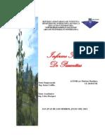 informe pasantias Mantenimiento.docx