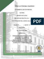 MANEJO DE PLAGAS AGRICOLA.pdf